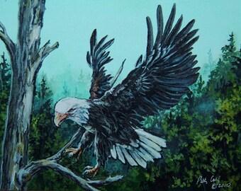 Notecards , Bald Eagle, Woodland Wall Decor, Patriotic Art