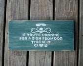 Peace, Love, Dog, Garden, Sign, Inspirational Quote, Man Cave, Looking for a Sign, God, Rustic, Cool Dog Duke, Plaque, Chomp, Made to Order
