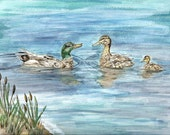 Matted Art Print of Original Watercolor Print of Mallard Duck Family - ValerieNusbaumAandD