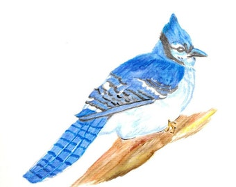 Matted Art Print of Original Watercolor Painting of Bluejay - Bird Art