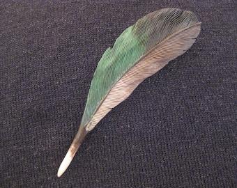 Widgeon Duck Wooden Feather Pin