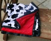 Red Rock minky blanket