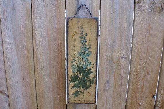 "Vintage Wooden Wall Hanging Rustic ""Delphinium Elatum"" Mounted Flower Print"