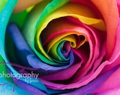 16x24 Canvas Gallery Wrap:  Rainbow Rose  on ETSY