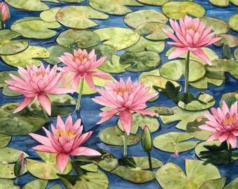 Pink Waterlily Watercolor Garden