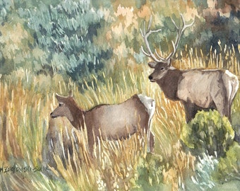 Elk in Yellowstone National Park Original Watercolor