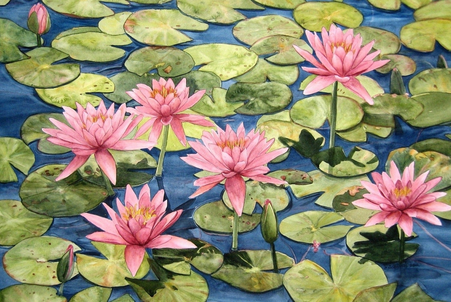Pink Waterlily Watercolor Garden