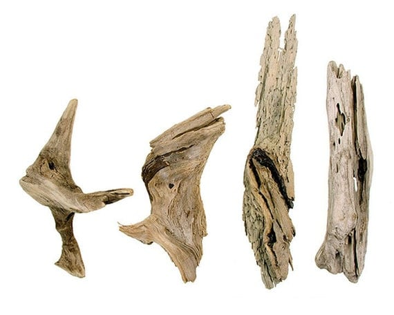 maine driftwood 4 large pieces lot 7 beach by quercusdetritus