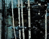 Abstract Fine Art Photography Blue Black White Industrial, Birch Forest At Night - 8x12
