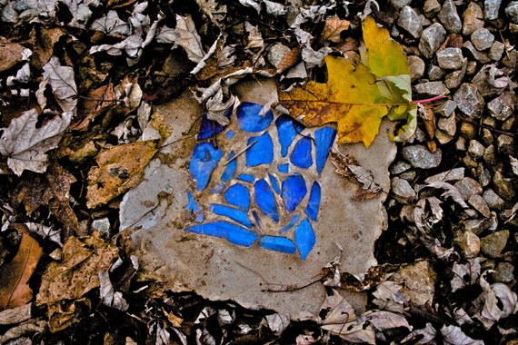 Abstract Fine Art Photography Blue Yellow Leaves, Cobalt and Leaf - 8x12