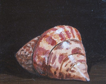 An original acrylic painting of a hermit crab shell, 9x12