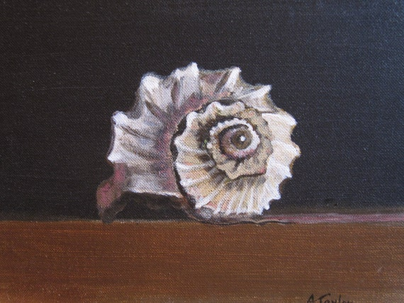 """Original acrylic painting of a conch shell, 9""""x12"""""""