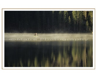FATHER'S DAY CARD, Trees Mist Fishermen, Quiet Lake, Reflections, Early Morning, masculine, All Occasion, Blank Greeting Card, Photo Card