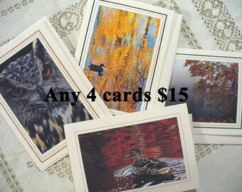 SPECIAL: Choose Any 4 cards & SAVE, All Occasion, Blank Greeting Card, Photo Card