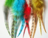 20 Feather hair extensions, Dyed feathers .hair extensions, 6 inch approx.5 to 8 inch,20 pcs,free 20Micro rings