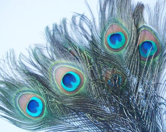 100 pcs Peacock feather, Nature feathers ,10-12 inch Real Natural Feathers,for wholesale