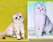 needle felted cat/dog - Custom Miniature Sculpture of your cat - OOAK miniature - Filzkatze
