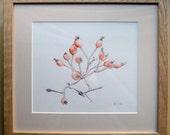 Ink drawing, original, Rose hips in February, framed