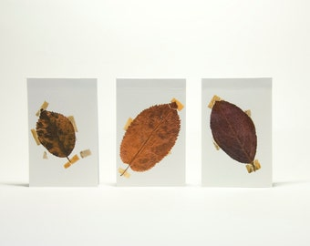 Notepads mini (lined) with print of dried leafs on the cover