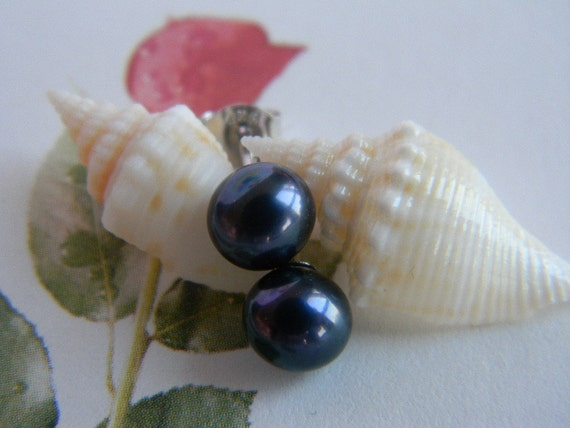 SALE Free Shipping - Black Purple Freshwater Pearl Earrings: Sterling Silver Stud Earrings, Super Lust AAA Round Pearls, Navy Blue Overtone