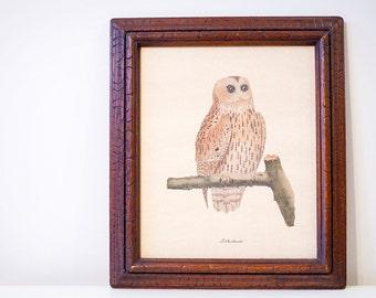 Vintage Framed Owl Print, Framed Art Print, Le Chathuant by Francois Martinet