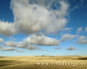 PALOUSE COUNTRY studies 2 - Fine Art Photograph, 4x6 matted, ready to frame or use as a greeting card - In Stock