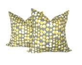 Decorative Pillows Gray and Yellow Amy Butler  Set of TWO 20x20