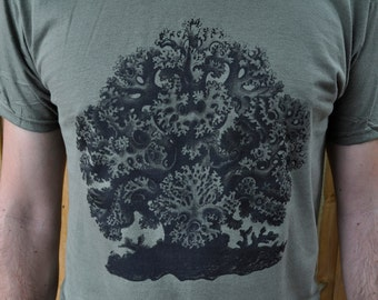 Tree T Shirt. Coral Tree T Shirt. Men. Haeckl.