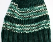 WARM - Men's Solid and Variegated Forest Green Striped Beanie