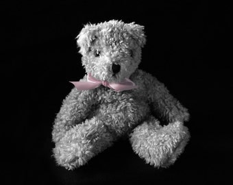 Nursery Photography - Black and white teddy bear with colored bow, 8x10 fine art photography