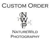 "Custom Order - ""Colorado Seasons"" Photo Gallery, Four 11x14 Matted Prints"