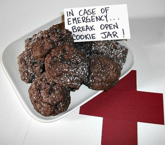 Emergency Chocolate Chocolate Chip Cookies