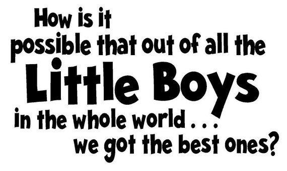 Little Boys Quote Vinyl Wall Decal