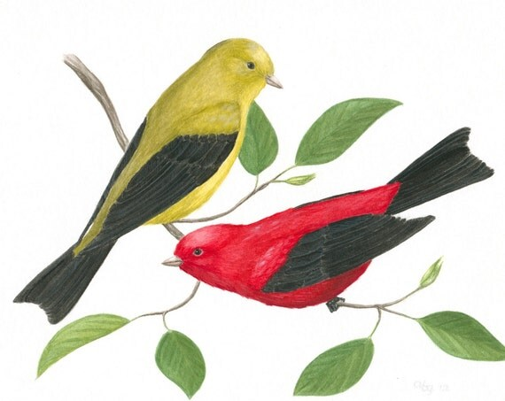 "Bird Painting, Original Scarlet Tanager Painting, Wildlife Art, Nature Painting, Bird in Tree, Gouache, Red Bird, Yellow Bird, 8"" X 10"""