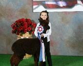 Champion Fiber Alpaca Fleece