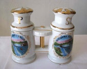 Salt and Pepper Shakers - Niagara Falls Salt and Pepper Shakers