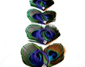 Fall Wedding Peacock Bridesmaids Feather Fascinator Set of 4