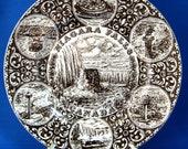 Brown Transferware Plate Vintage Niagra Falls Ironstone Souvenir England 1940s