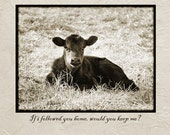 Cute Brown Calf Notecard with Adorable Take Me Home Quote