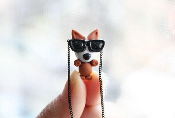 Mocha the Pembroke Welsh Corgi with sunglasses necklace