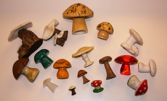 PRICE REDUCED (was 45 dollars) Lot of 17 collectible mushrooms