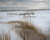 Winter Beach photo: 8 x10 photo of a beach with dune grass and snow