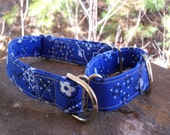 A medium-size martingale dog collar in a striking blue bandana fabric - great for greyhounds, whippets and others.