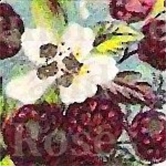 Raspberries and Flowers Banner With Avatar