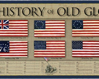 History Of The American Police Officer Print Poster Law