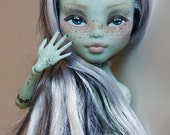 CUSTOM Monster High Repaint (BASE PRICE)