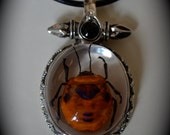 Real Flower Bug in Lucite with Metal Setting Necklace