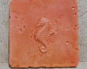 6x6 Accent Tile - More colors available - Seahorse
