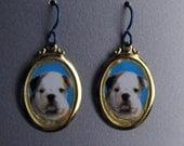 Baby Bulldog Puppy Love Earrings