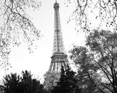 Eiffel Tower Fine Art Print  8x12 Black & White